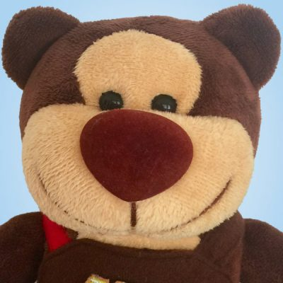 Big Bear Brown soft toy teddy bear closeup